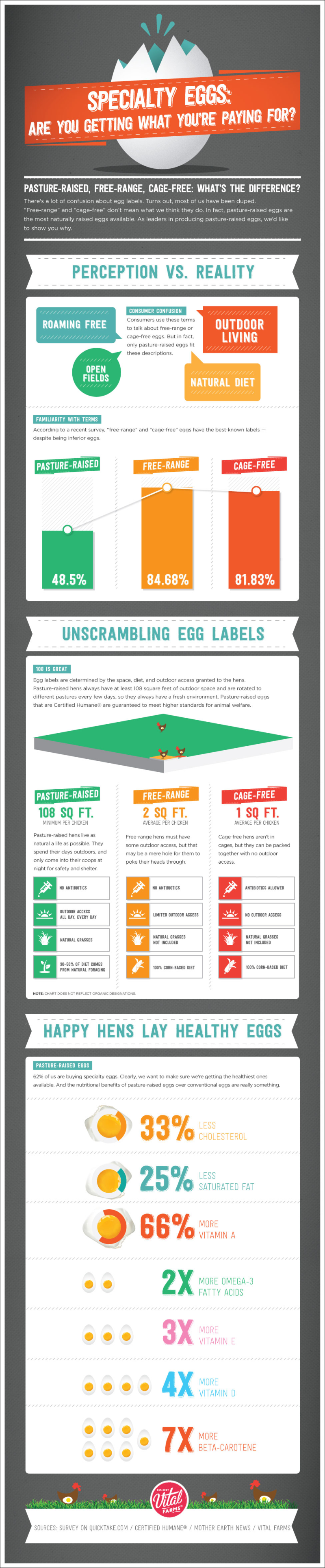 Specialty Eggs Infographic