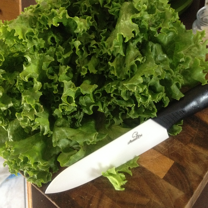 Abundant Chef Ceramic Knife with Leaf Lettuce
