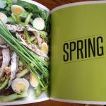 Salad Love Spring Salad Recipes