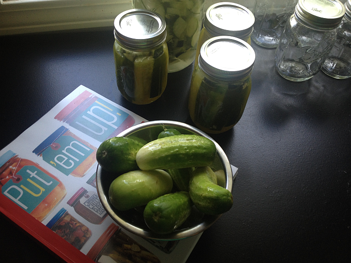 Put em Up Guide to Pickling and Preserving