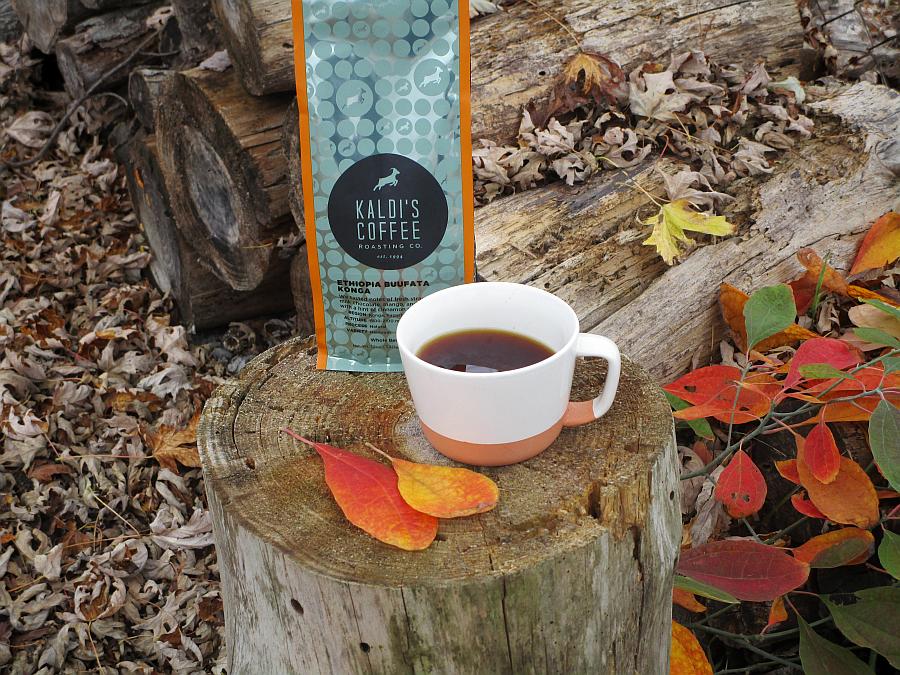 Kaldi's Coffee Ethiopia Buufata Konga