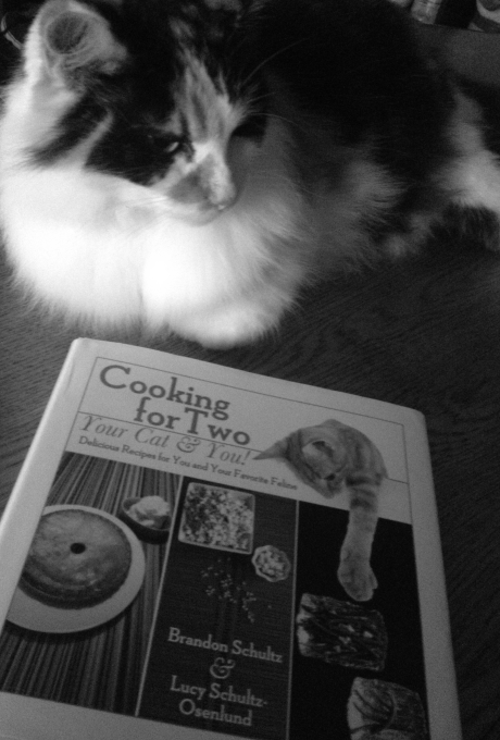 Alexa and Her First Cookbook