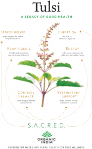 Foodie News: Have You Ever Heard of Tulsi?