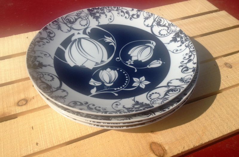 Slimware Ceramic Plates