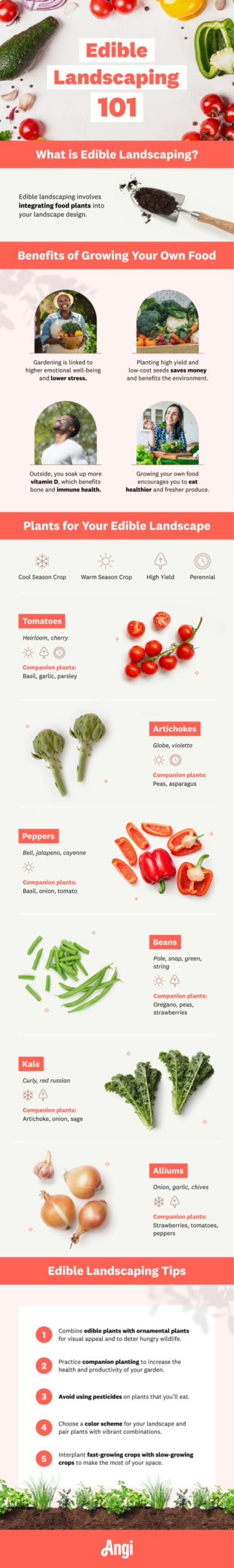Edible Landscaping Infographic